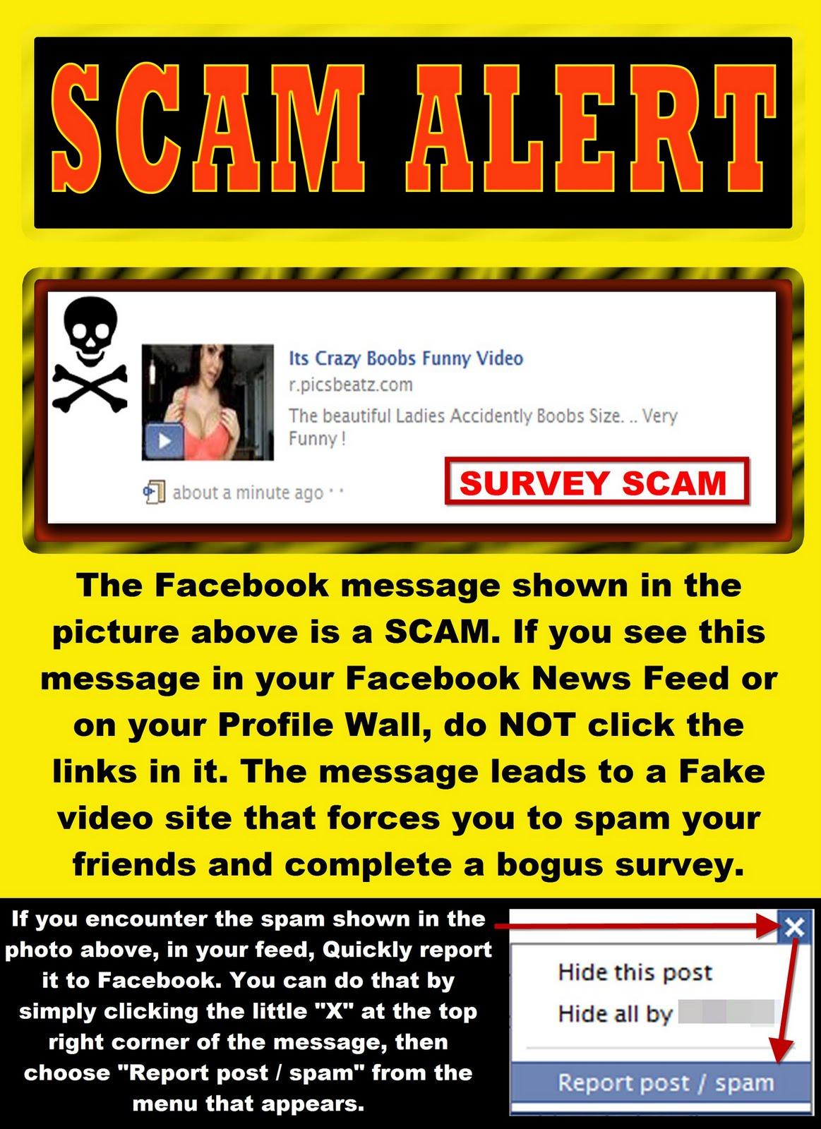 the bulldog estate facebook com bulldog estate page 12 >scam alert if you are looking for crazy boobs videos on facebook